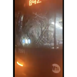 Smashed windshield of the B42 Bus